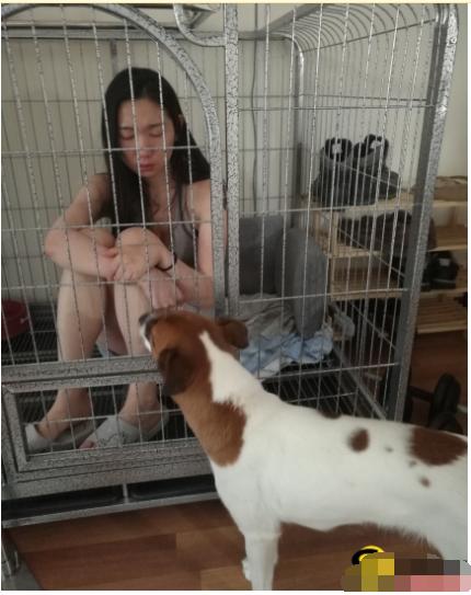 揭秘 小母狗 性瘾成瘾患者的日常在土豪身上也是特别卖力调教有方