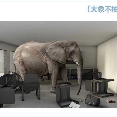 【大象不抽象】系列文章综览