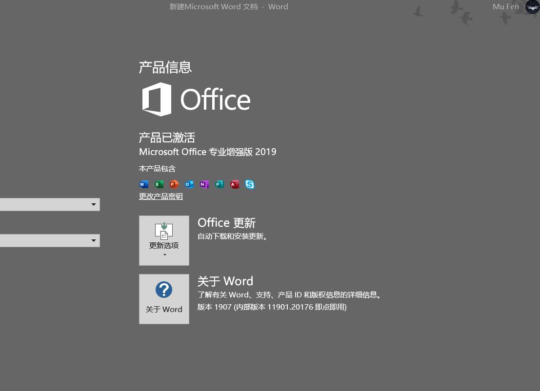 Office2019安装和激活流程及遇到的各种问题和解决方法插图(1)
