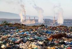 ¿Política medioambiental? ¿donde?