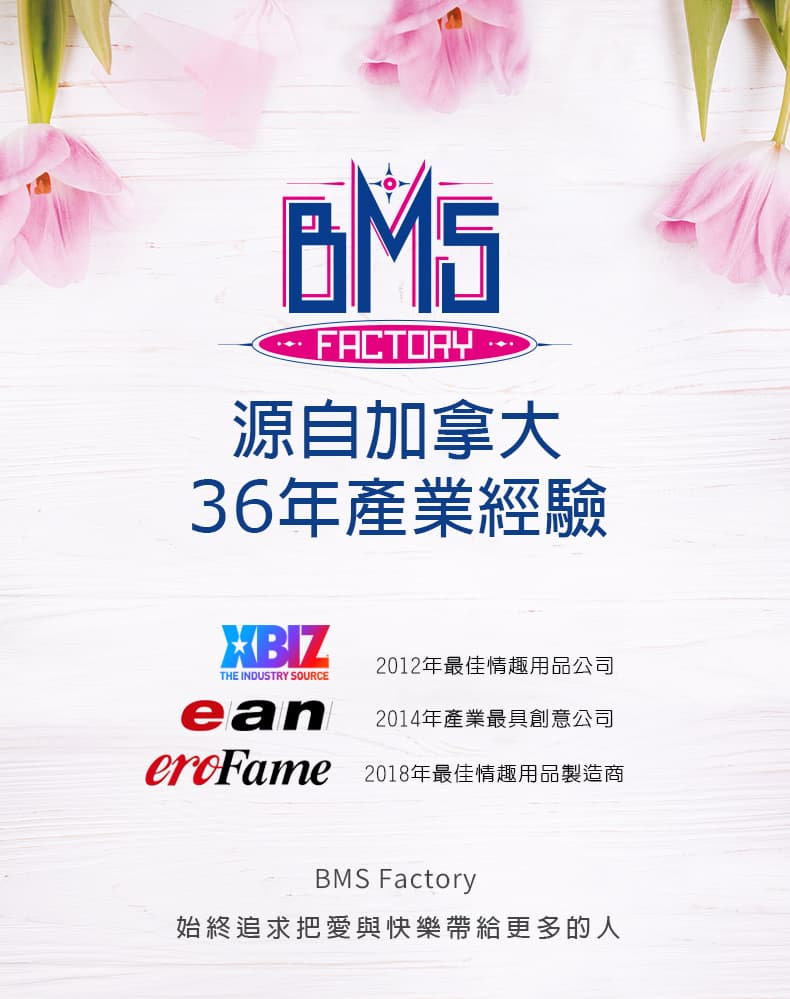 BMS 一部分得獎歷史